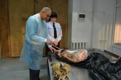 Тушу амурского тигренка хранил в рефрижераторе приморец