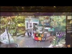 Уроженец ближнего зарубежья напал с дубиной на продавца цветочного магазина во Владивостоке
