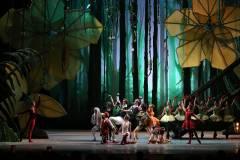 «Джунгли» зовут на балет: историей олененка Бемби пополнится репертуар приморской Мариинки