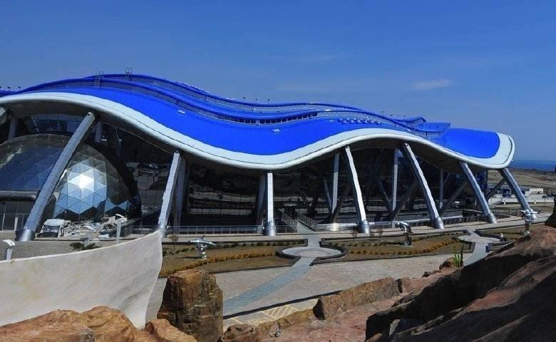 Приморский океанариум возобновил интернет-продажу билетов