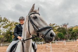 Во Владивостоке состоялось первенство города по конному спорту