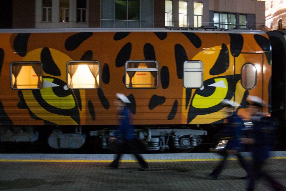 «Тигриный» поезд прибыл во Владивосток