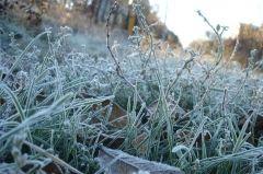 Во Владивостоке ожидается похолодание до +4 °С