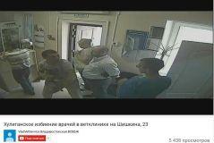 Избиение мертвой кошкой впечатлило Владивосток