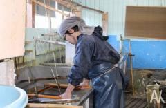 Искусству Симанэ обучат жителей Приморья