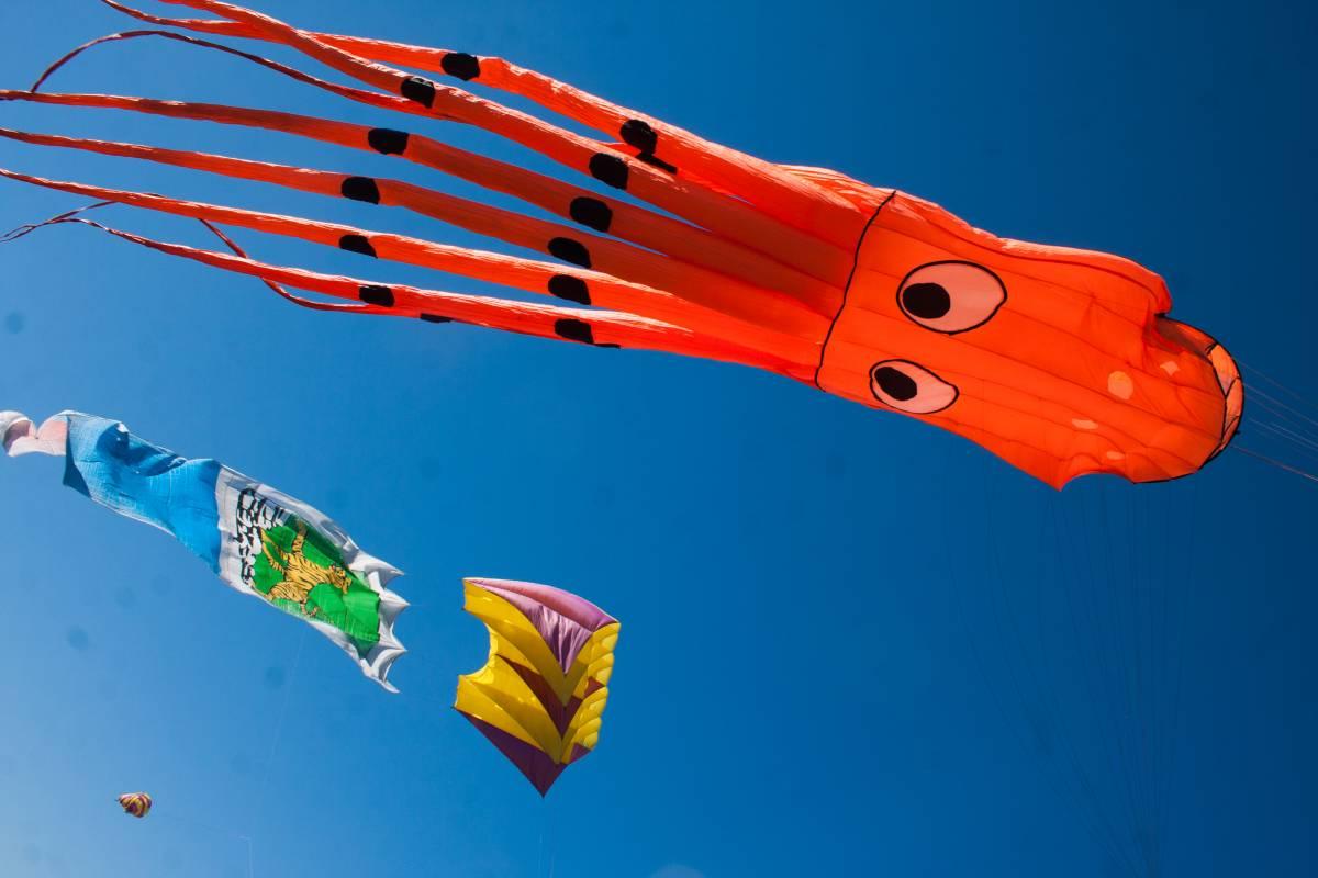 Во Владивостоке прошел фестиваль воздушных змеев