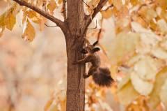 Приморцы прощаются с последними теплыми днями осени