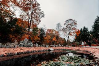 Яркие краски приморской осени