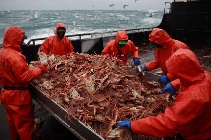 Морепродукты из Владивостока стали больше экспортироваться за границу