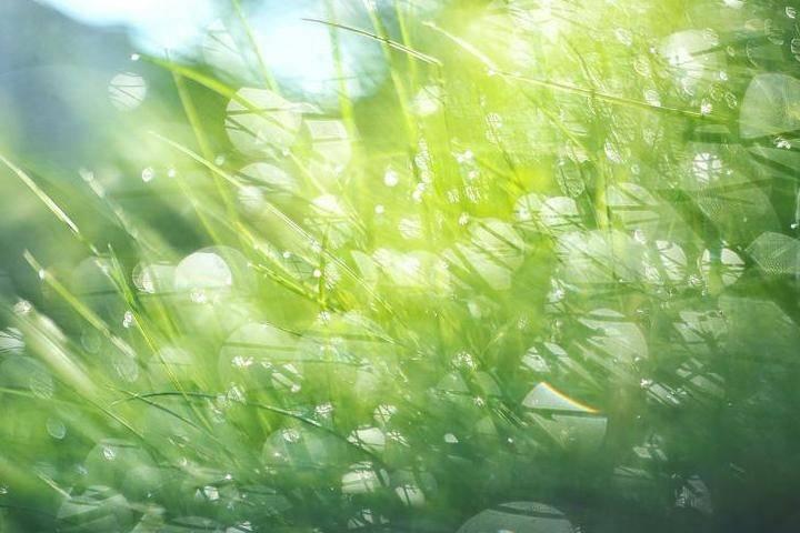 Летняя погода вернется в Приморье на выходных
