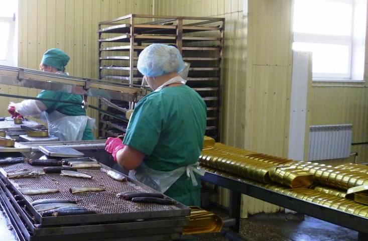 Приморские рыбаки выловили более 4,3 тысячи тонн редкой сельди иваси