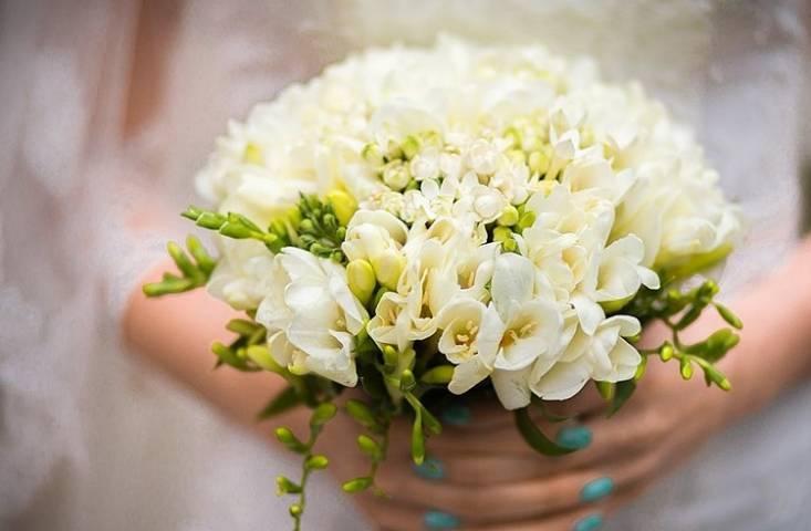 Необычная регистрация брака вызвала восторг у жителей Приморья