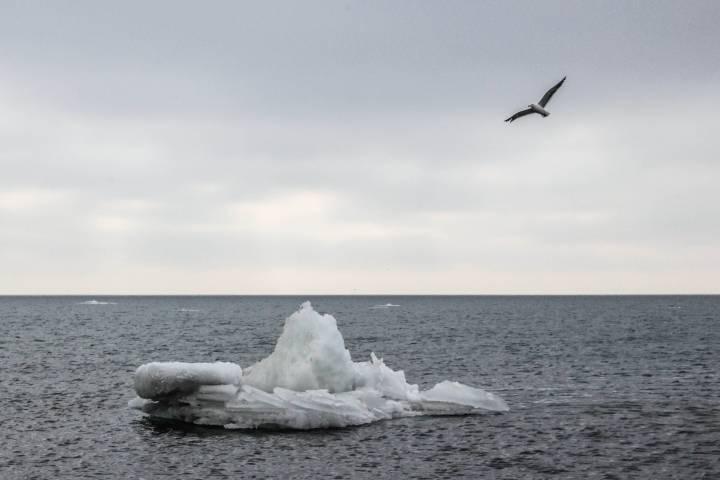В Приморье пройдет «ледяной дождь»