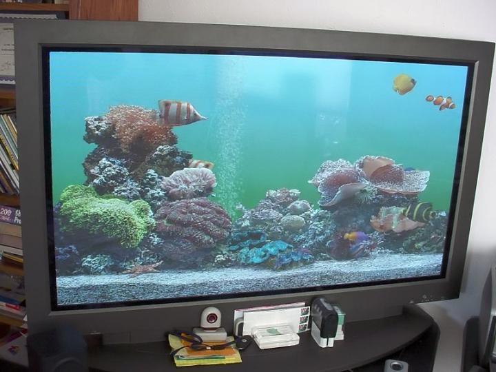 Жителя Владивостока обманули при покупке телевизора через Интернет