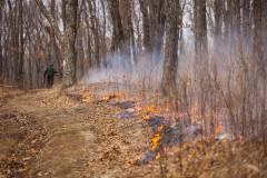 В Приморском крае бушуют два лесных пожара