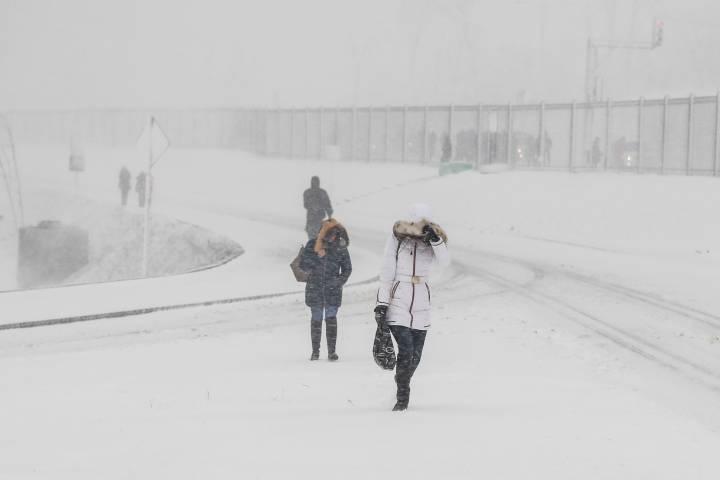 Во Владивостоке беременные женщины не могут попасть в женскую консультацию