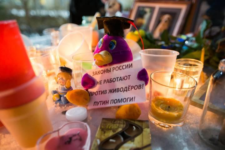 Во Владивостоке прошел вечер памяти убитых в Хабаровске животных