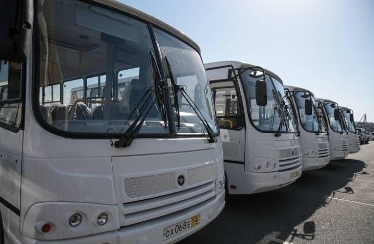 Десятки междугородних автобусов из Владивостока вновь будут отменены