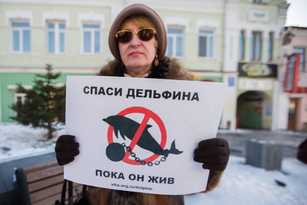 Во Владивостоке зоозащитники потребовали переделать океанариум в аквапарк