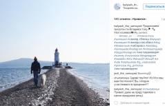 Звезда Instagram пес Беляш посетил Владивосток
