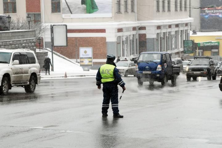 В Приморье заметили необычных инспекторов ГИБДД