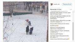 Во дворах Владивостока дети вновь принялись лепить снеговиков