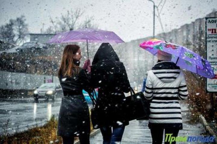 Сегодня в Приморском крае ожидается снег с дождем