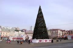 Во Владивостоке начали устанавливать главную новогоднюю елку