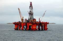 Морские обитатели помогают ученым ДВФУ находить нефть