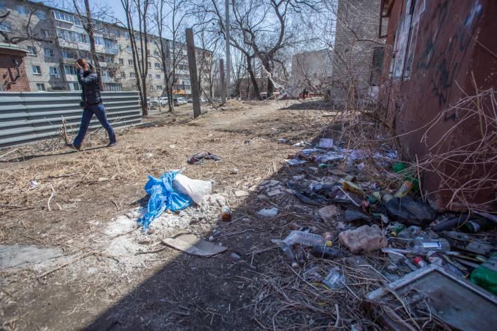 Неубранный мусор в Приморье привлек к себе нежданных гостей