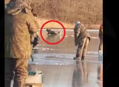 «Жизнь за корюшку»: рыбалка могла закончиться трагедией для жителя Владивостока