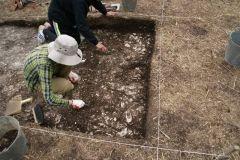 Археологи обнаружили во Владивостоке сооружения древнего человека