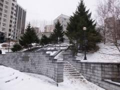 Зима в Приморье будет холодной и снежной – синоптики