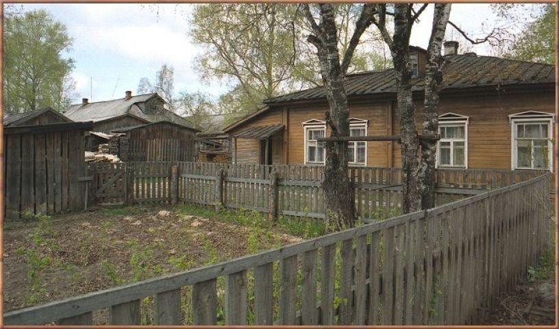 Приусадебный участок в Приморье превратился в плантацию конопли