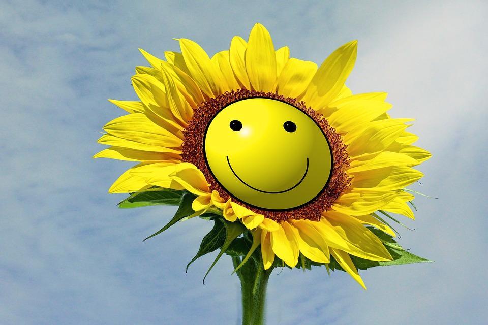 Приморье стало одним из 25 самых счастливых регионов страны