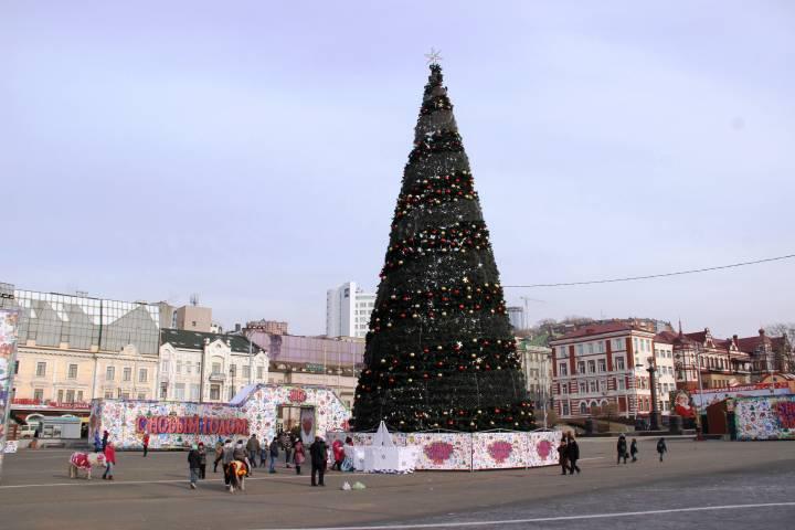 Во Владивостоке начали украшать главную городскую елку