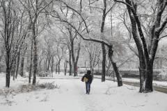 Снежный циклон накроет Приморье