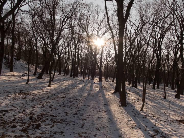 В Приморье температура воздуха понизилась до экстремальных значений