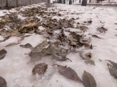 Снегопад обрушится на Владивосток в понедельник