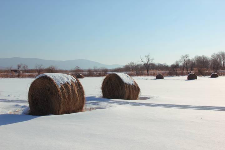 На выходных в Приморье ожидается плюсовая температура