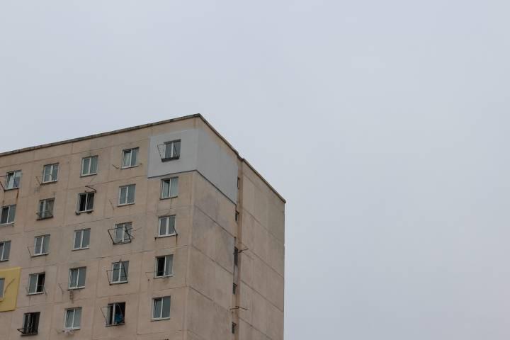 Жители Владивостока увидели в подъезде необычного гостя