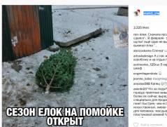 Первую выброшенную елку заметили пользователи соцсетей в Приморье