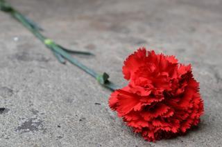Председатель приморского парламента выразил соболезнования родным и близким Виктора Кондратова
