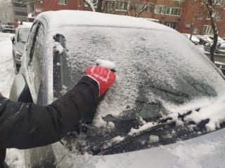 Фото: PRIMPRESS   Поступок водителя «электрички» в снегопад набрал 85 тыс. просмотров и 330 комментариев