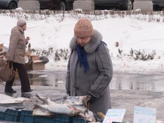 Более 80 кг замороженной наваги изъяли в Приморье