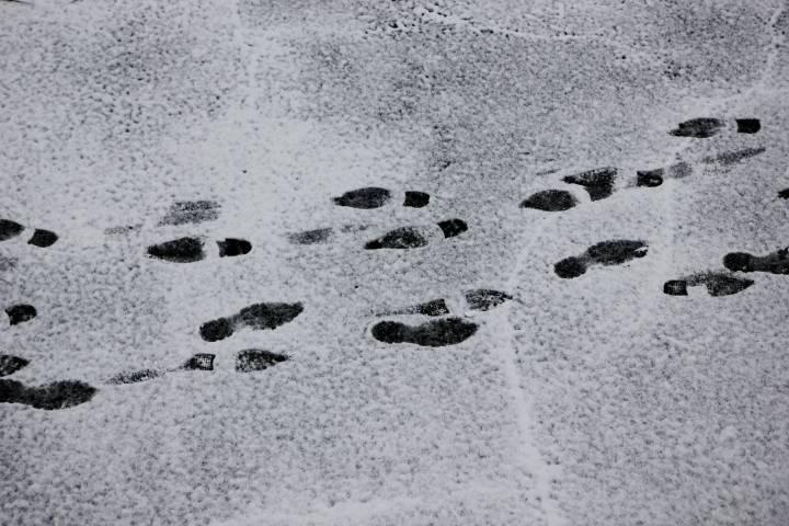 Тест PRIMPRESS: падал прошлогодний снег