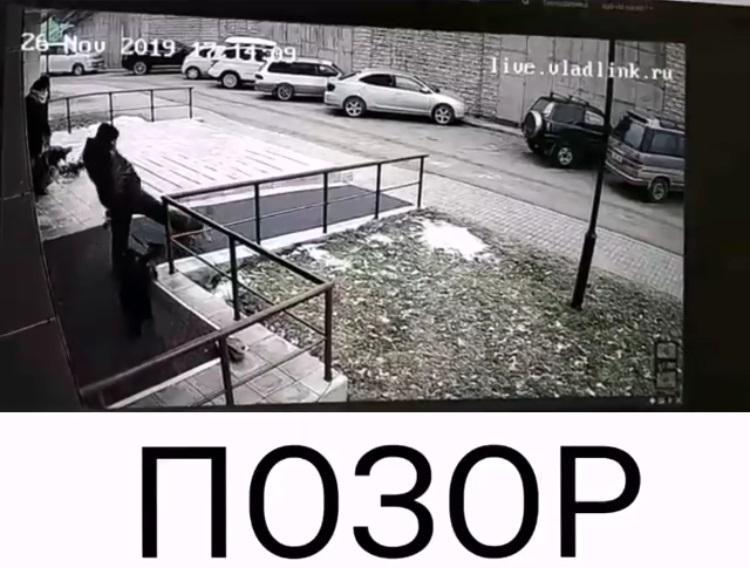 Появилось еще одно видео избиения женщины и ее собак во Владивостоке