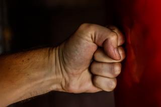 Фото: pixabay.com | «Какой ужас»: видео драки с огромной крысой набирает популярность в Приморье
