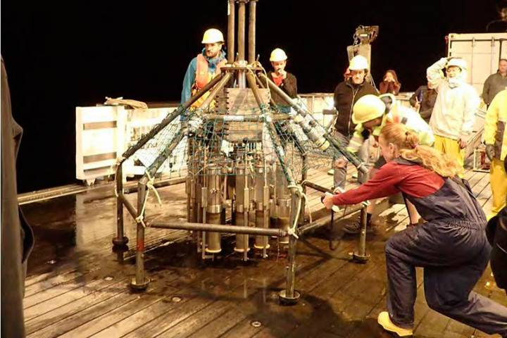 500 новых для науки организмов— результаты экспедиции вКурило-Камчатский желоб