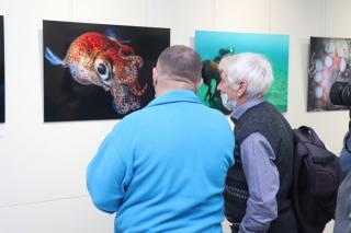 Фото: Екатерина Дымова / PRIMPRESS | Сразу две выставки открылись в музее современного искусства «Артэтаж»